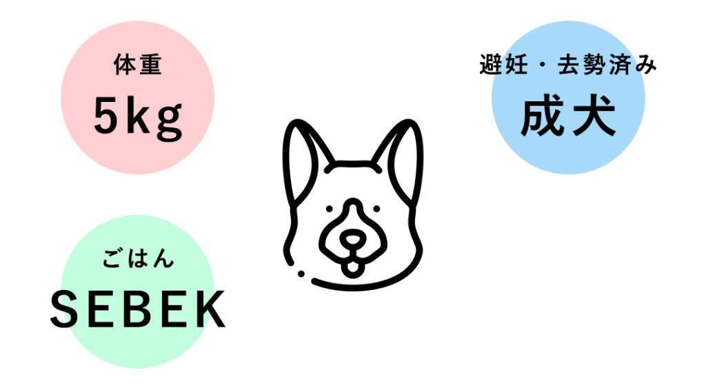 体重5kgの成犬(避妊・去勢済み)へ、INUMESHIセベクを与える際の給与量